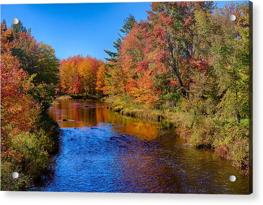Maine Brook In Afternoon With Fall Color Reflection Acrylic Print