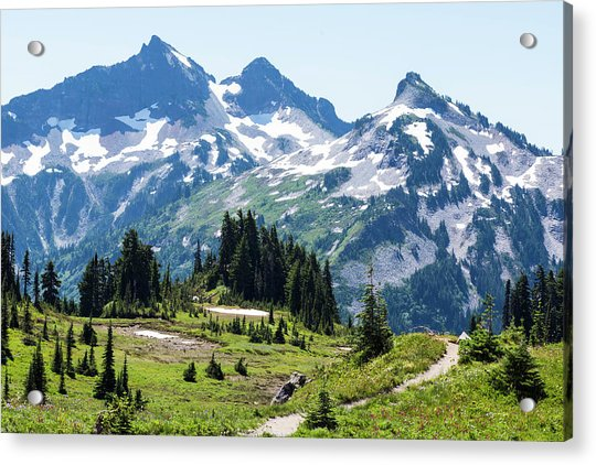 Mazama Ridge And Tatoosh Range Acrylic Print