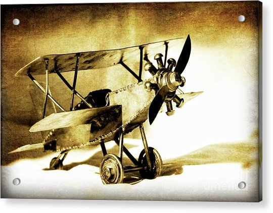 Memories Of Flying Acrylic Print by Lincoln Rogers