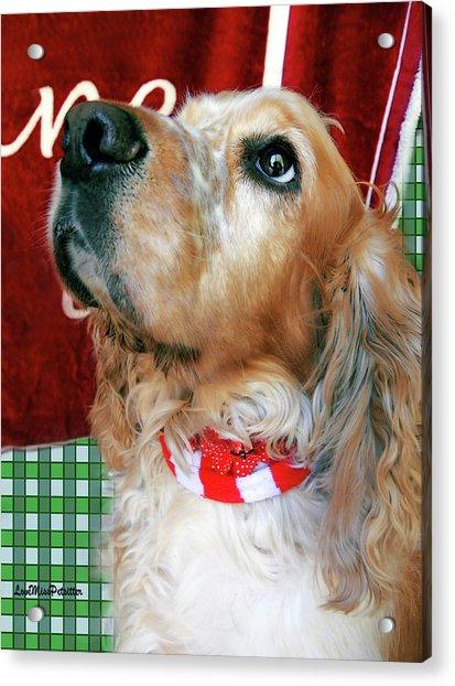 Merry Christmas Art 33 Acrylic Print