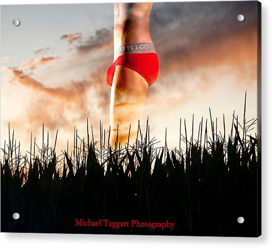 Acrylic Print featuring the photograph Michael Phelps Sunset by Michael Taggart