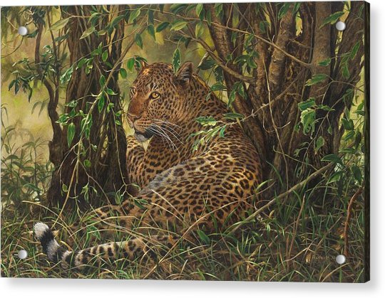 Acrylic Print featuring the painting Midday Siesta by Alan M Hunt