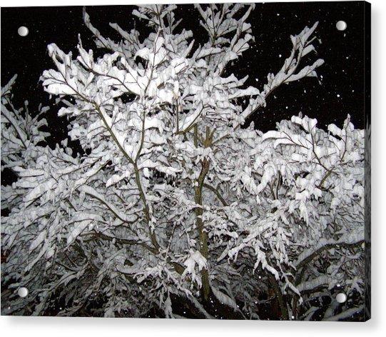 Midnight Snow 3 Acrylic Print by Christine Sullivan Cuozzo