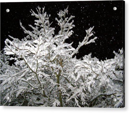 Midnight Snow 4 Acrylic Print by Christine Sullivan Cuozzo