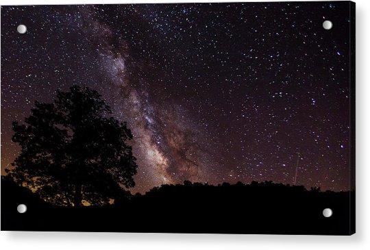 Milky Way And The Tree Acrylic Print