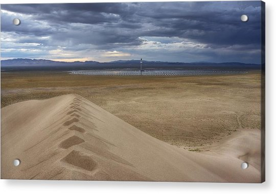 Mirror Mirror In The Desert Who Is The Smartest Of Them All Acrylic Print
