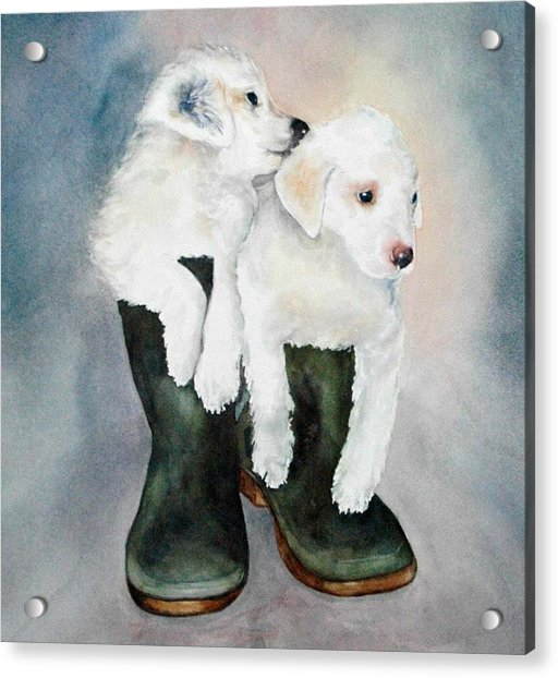 Monti And Gemma Acrylic Print