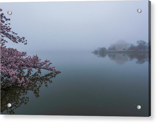 Morning Fog At The Tidal Basin Acrylic Print by Michael Donahue