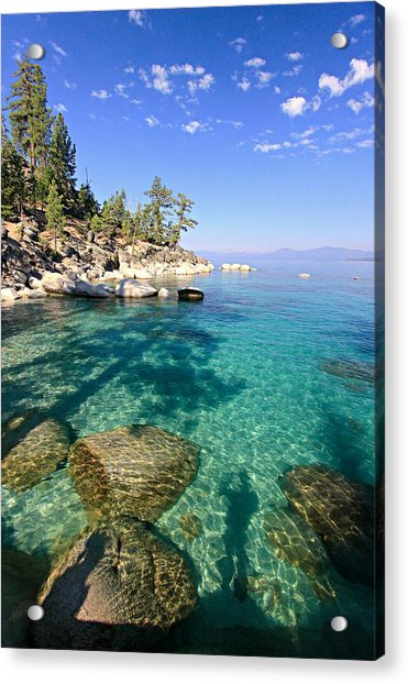 Morning Glory At The Cove Acrylic Print