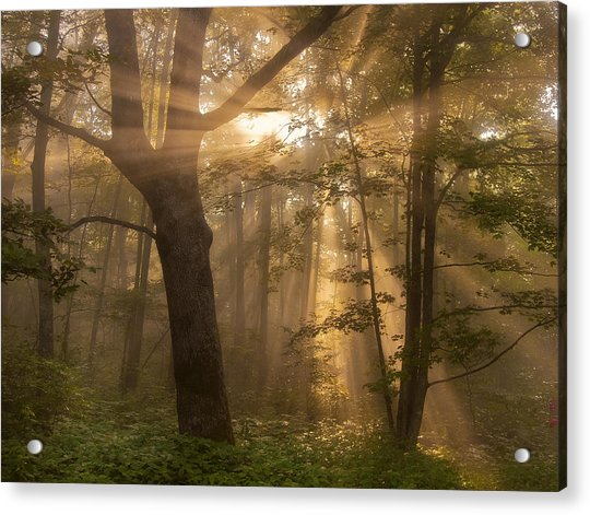 Morning God Rays Acrylic Print