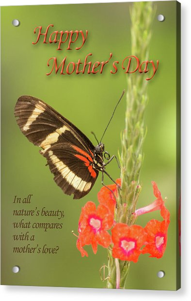 Mother's Day-butterfly Acrylic Print