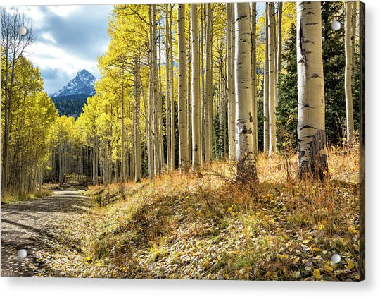 Mountain Highlights Acrylic Print