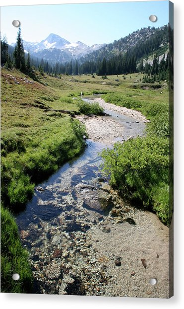 Mountain Meadow And Stream Acrylic Print