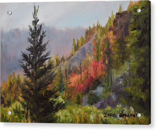 Mountain Slope Fall Acrylic Print