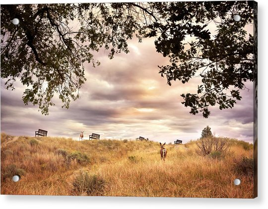 Munson Morning Acrylic Print