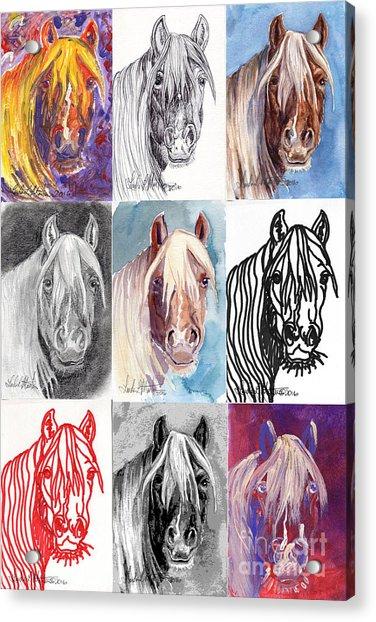Mustang Mare 1154 Acrylic Print