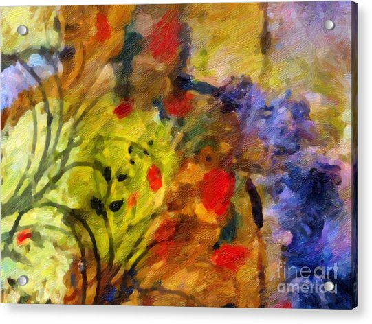Natures Colorplay Acrylic Print