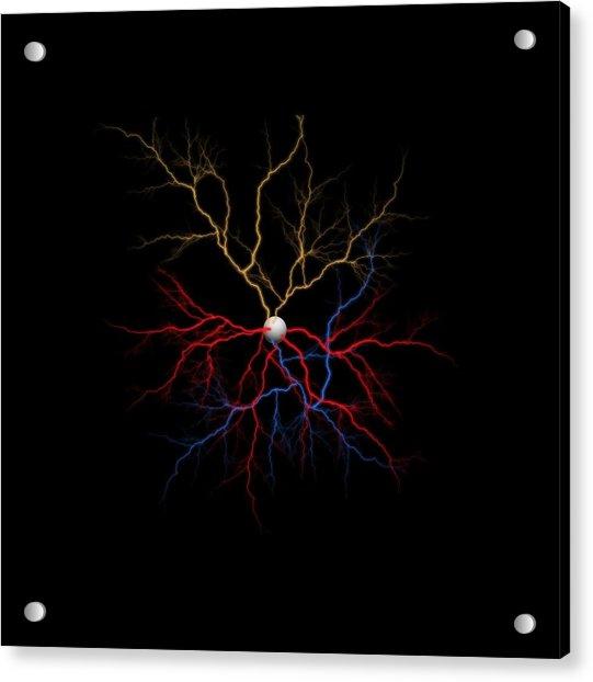 Neuron X1x Example Acrylic Print