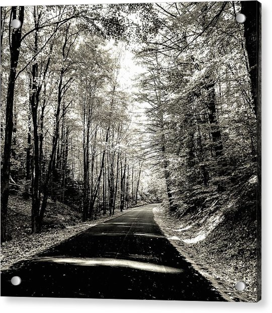 October Grayscale  Acrylic Print