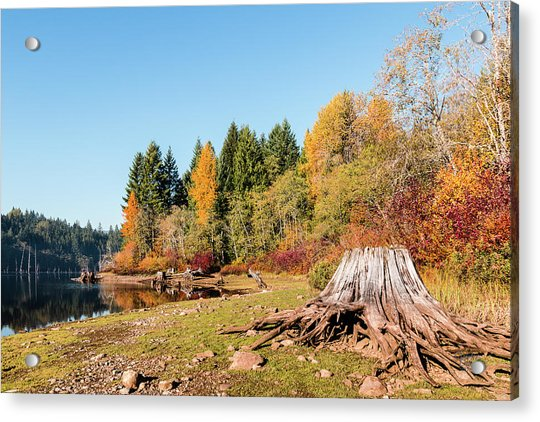 October On The Lake Shore Acrylic Print