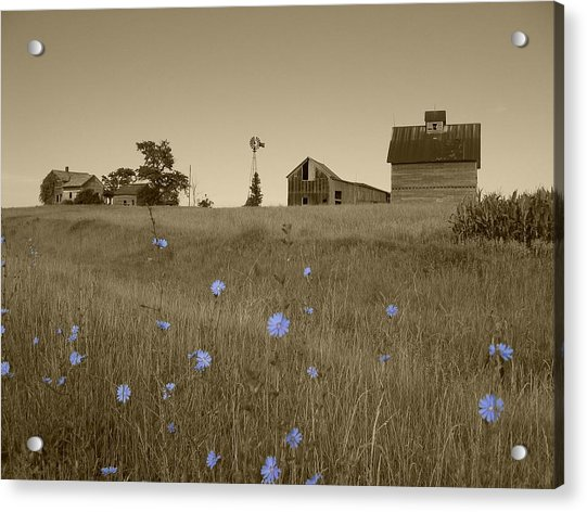 Odell Farm V Acrylic Print