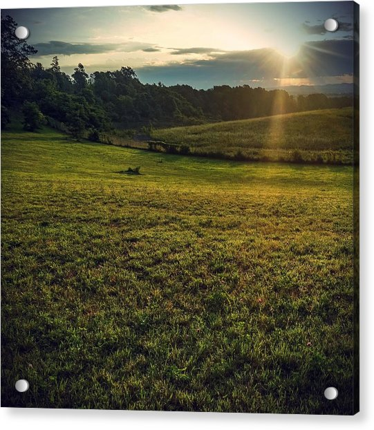 Oh What A Beautiful Morning Acrylic Print