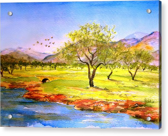 Acrylic Print featuring the painting Olive Grove by Valerie Anne Kelly