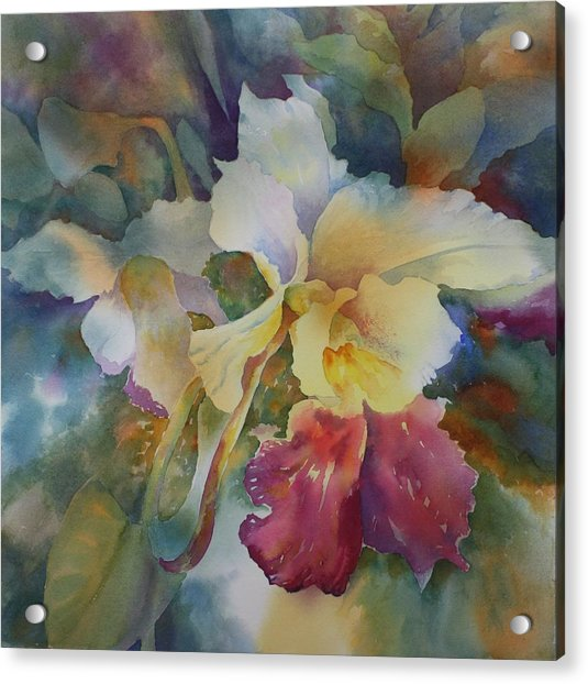 Orchidstrated Acrylic Print