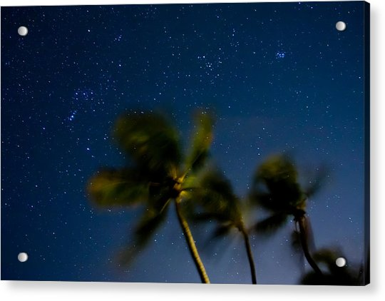 Orion And Windswept Palms Acrylic Print
