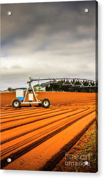 Outback Australia Agriculture Acrylic Print