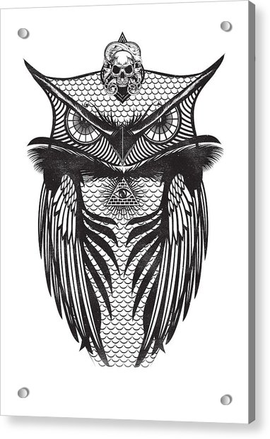 Owl Illustration Acrylic Print