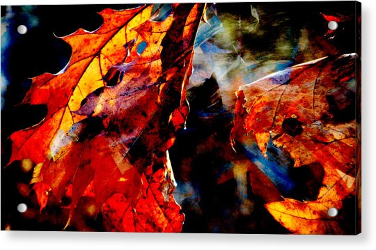 Painted Branches Abstract 3 Acrylic Print