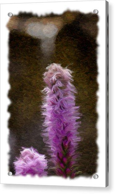 Painted Purple Flower Acrylic Print