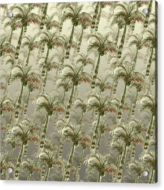 Palm Tree Grove Acrylic Print