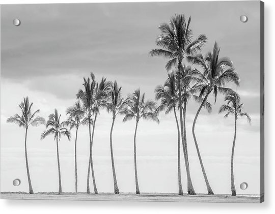 Paradise In Black And White Acrylic Print