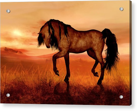 Acrylic Print featuring the painting Paso Fino by Valerie Anne Kelly