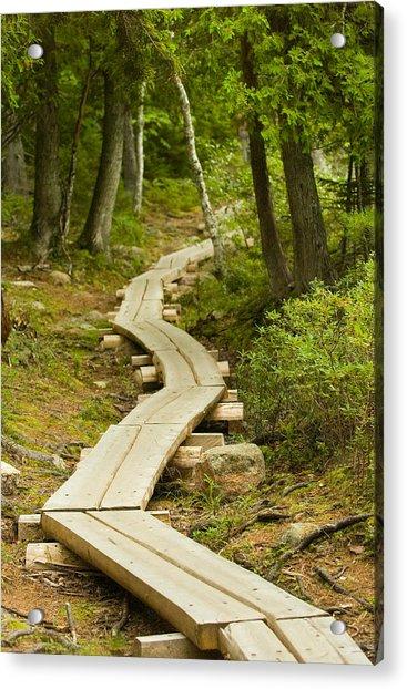 Path Into Unknown Acrylic Print