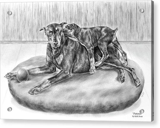 Patience - Doberman Pinscher And Puppy Print Acrylic Print