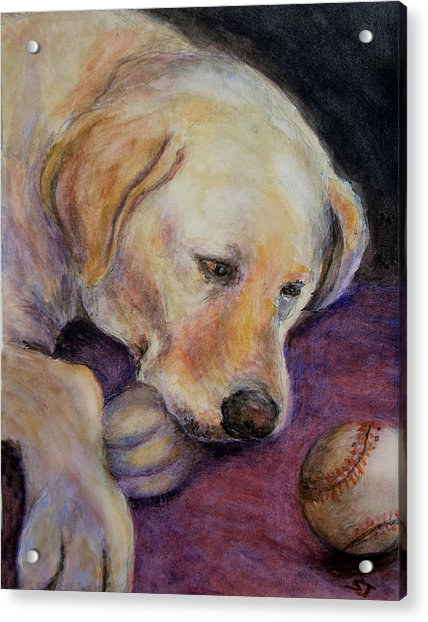 Patiently Waiting Acrylic Print