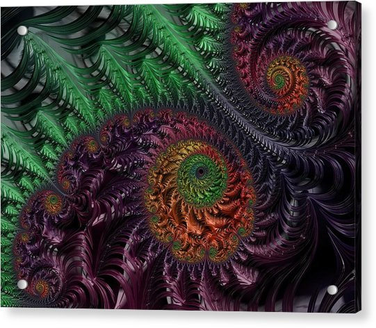 Peacock's Eye Acrylic Print