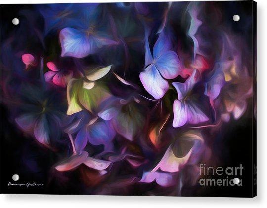 Petals Of Hydrangea Acrylic Print