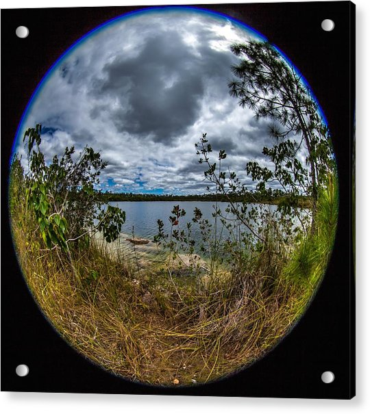 Pine Glades Lake 18 Acrylic Print
