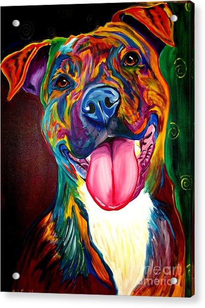 Pit Bull - Olive Acrylic Print