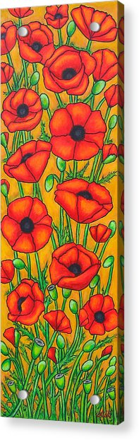 Poppies Under The Tuscan Sun Acrylic Print