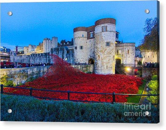 Poppy Flowers Tower Of London Acrylic Print