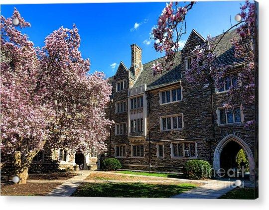 Princeton University Pyne Hall Courtyard Acrylic Print