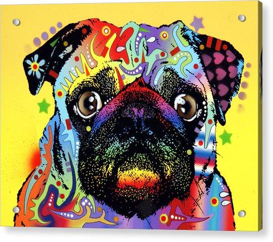 Pug Acrylic Print by Dean Russo Art