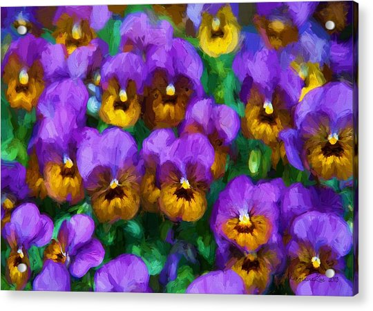 Purple Pansies Acrylic Print