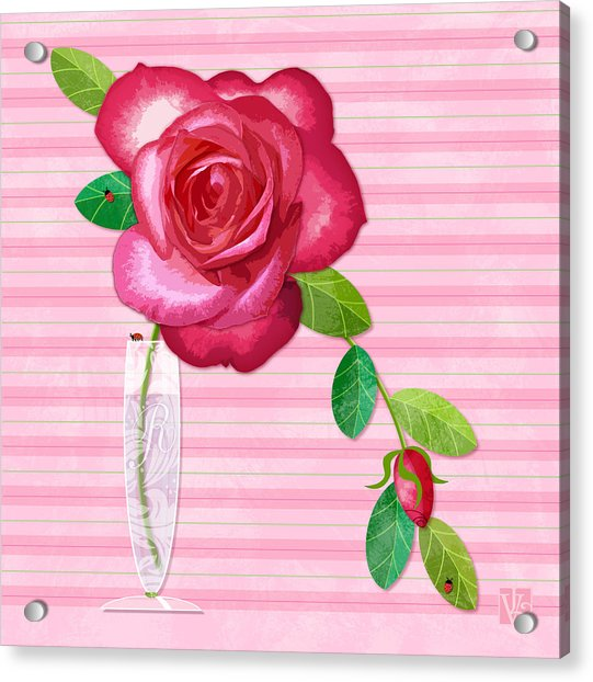 R Is For Rose Acrylic Print