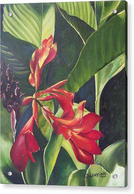 Red Cannas Acrylic Print